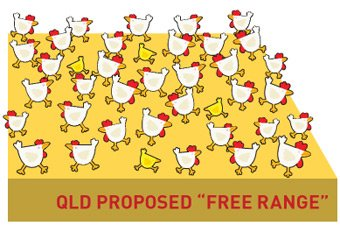 image of Save free-range in QLD!